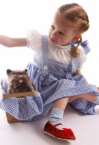 girl dressed as Dorothy with Toto - theater organizations